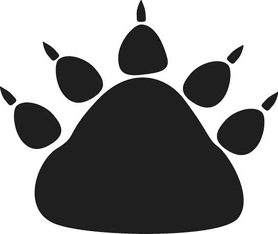 Black Bear Paw Print